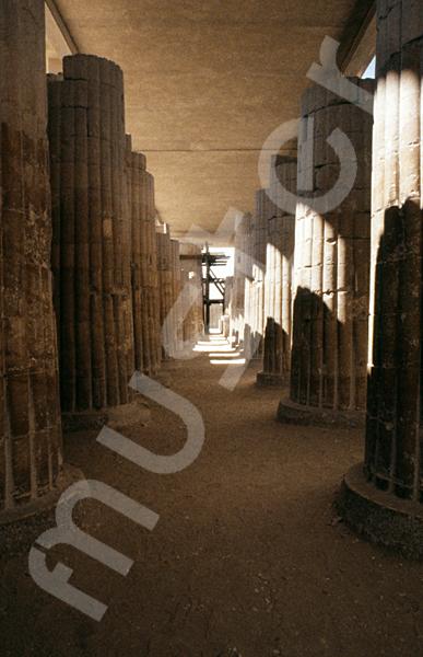 Djoser-Pyramide: Kollonaden- / Eingangshalle, Bild-Nr. Grßansicht: 200a/29